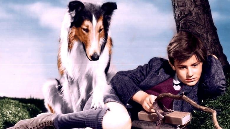 Lassie Come Home film stream Online kostenlos anschauen