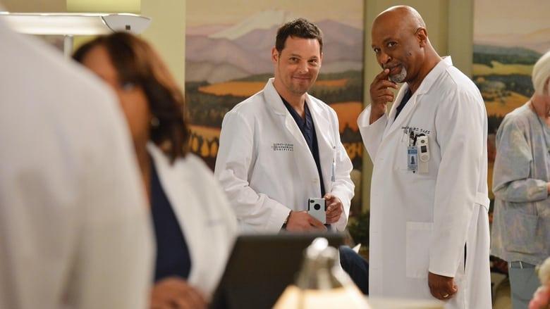 Grey's Anatomy Season 9 Episode 18