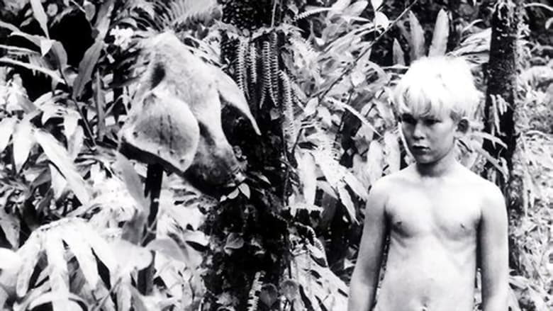 Photo de Lord of the Flies