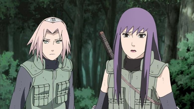Naruto Shippūden Season 14 Episode 308