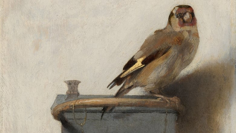 The Goldfinch Backdrop
