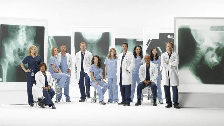 Grey's Anatomy Season 13 Episode 4 : Falling Slowly