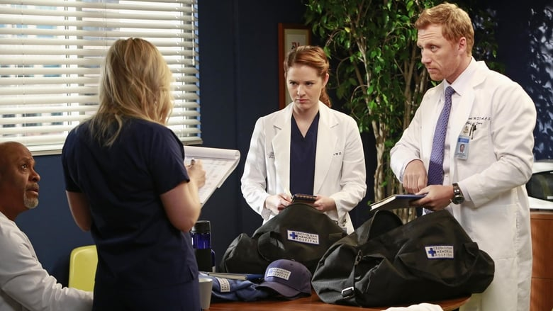 Grey's Anatomy Season 9 Episode 20