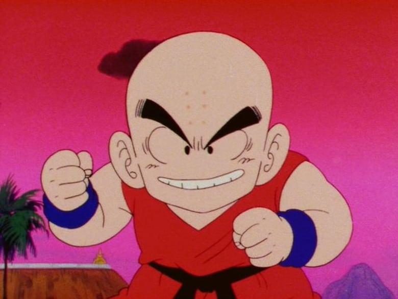 Dragon Ball Season 1 Episode 96