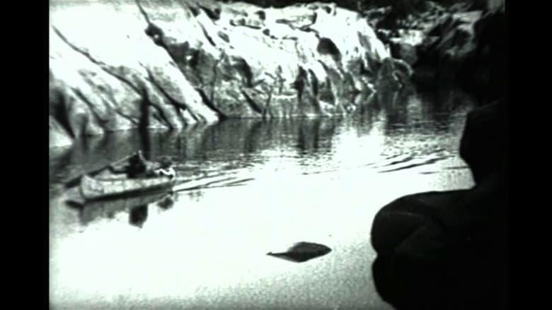 Forbidden Trails film stream Online kostenlos anschauen