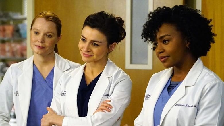 Grey's Anatomy Season 12 Episode 17