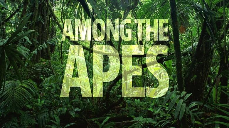 Among the Apes