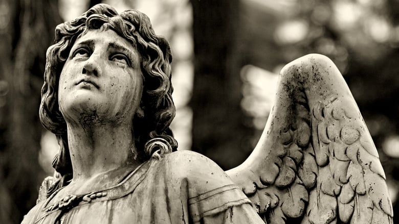 Photo de Wings of Desire