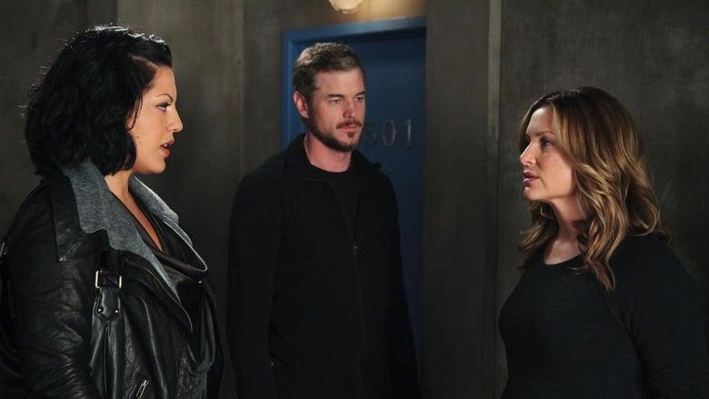 Grey's Anatomy Season 7 Episode 12