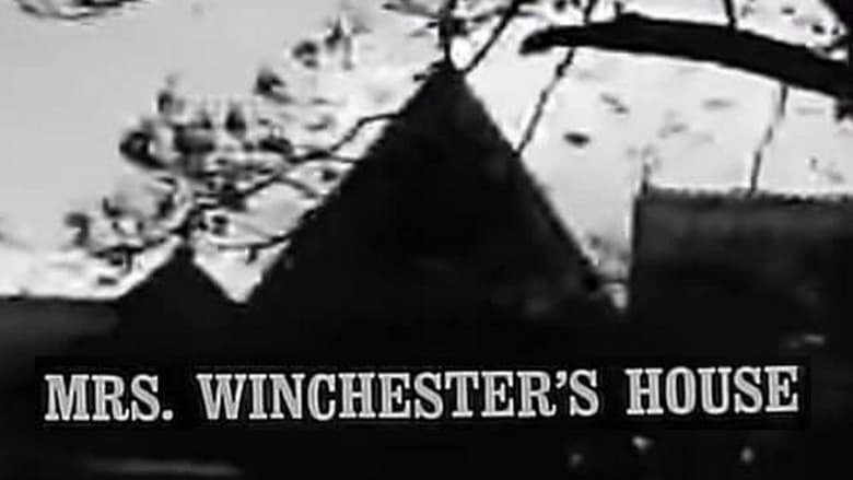 Mrs. Winchester's House
