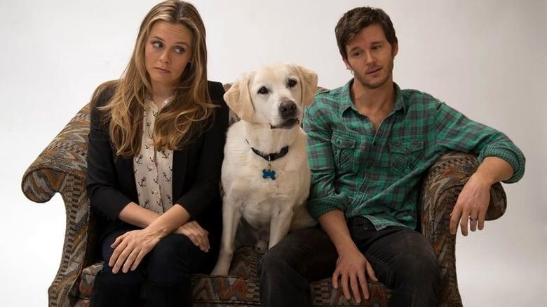 Um Cachorro Para Dois Dublado/Legendado Online