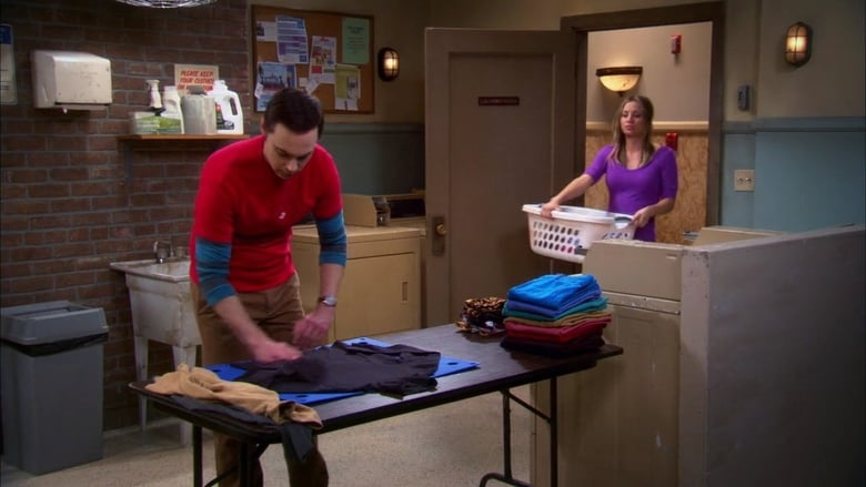The Big Bang Theory Season 5 Episode 21