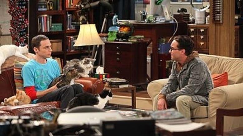 The Big Bang Theory Season 4 Episode 3
