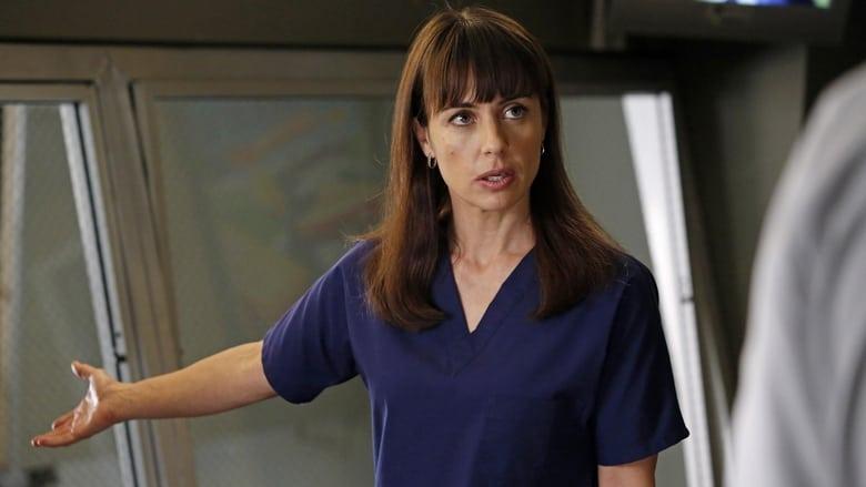 Grey's Anatomy Season 9 Episode 12