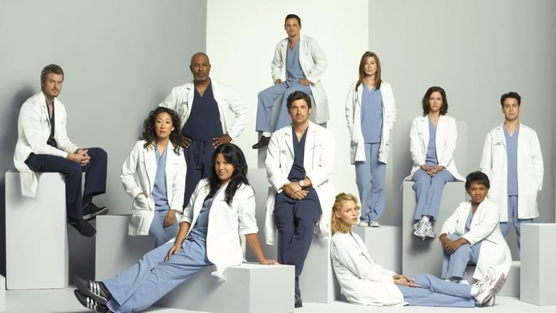Grey's Anatomy Season 12 Episode 5 : Guess Who's Coming to Dinner?