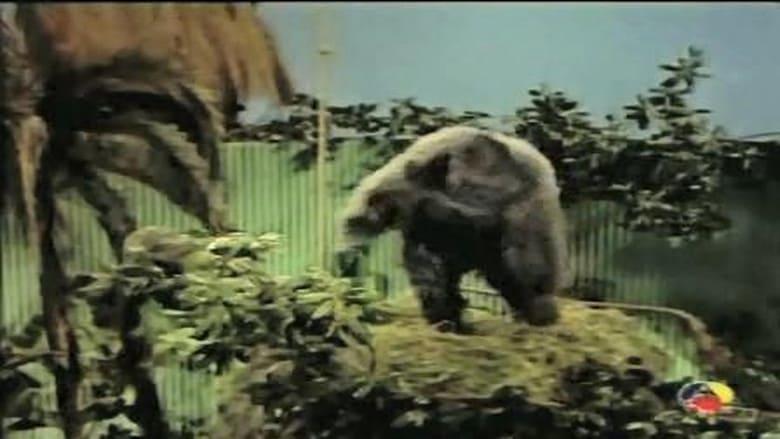 Gorilla at Large film stream Online kostenlos anschauen