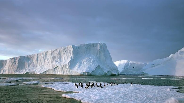 Antarctica 3D: On the Edge