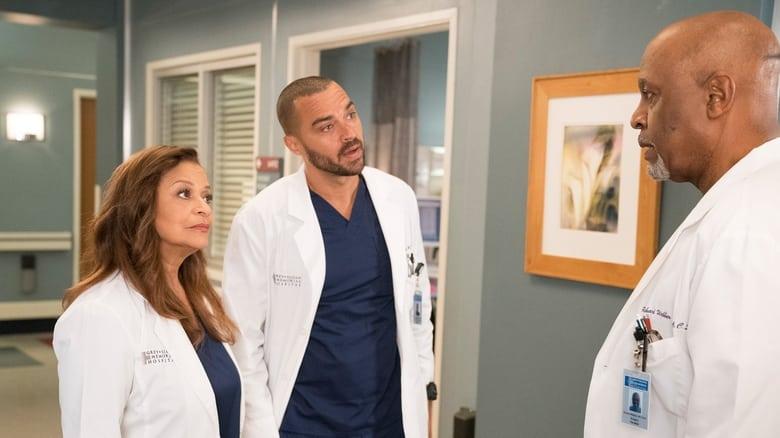 Grey's Anatomy Season 14 Episode 16