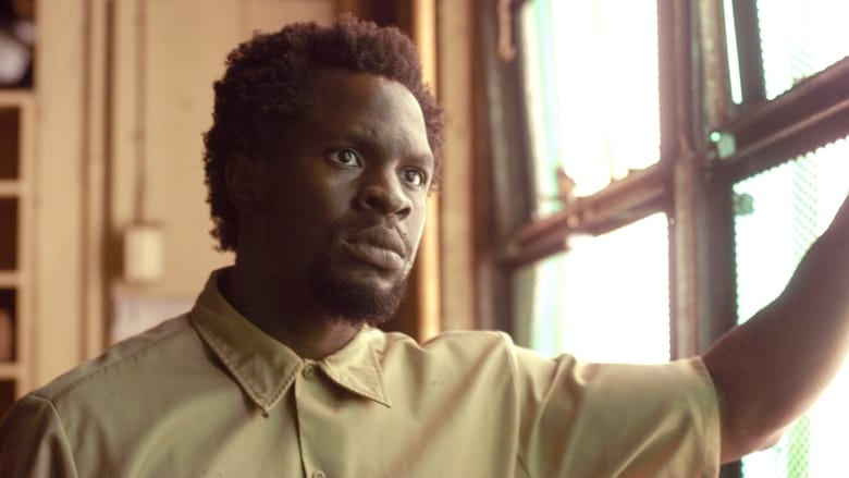 The Wire saison 5 episode 9 streaming