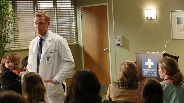 Grey's Anatomy Season 9 Episode 15