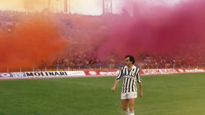 Black and White Stripes: The Juventus Story