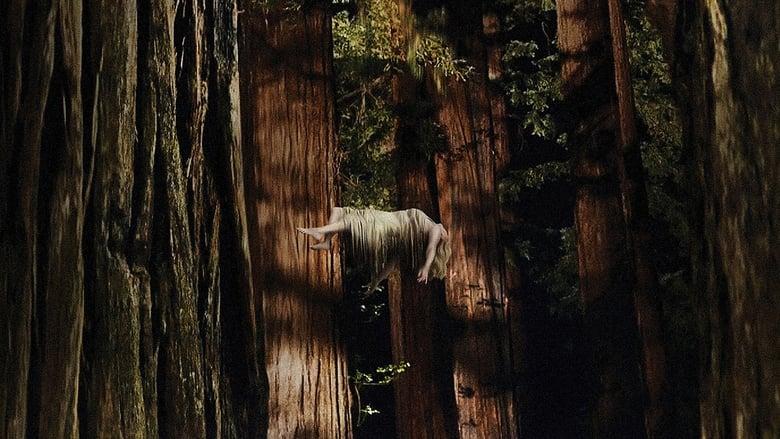 Woodshock Dublado/Legendado Online