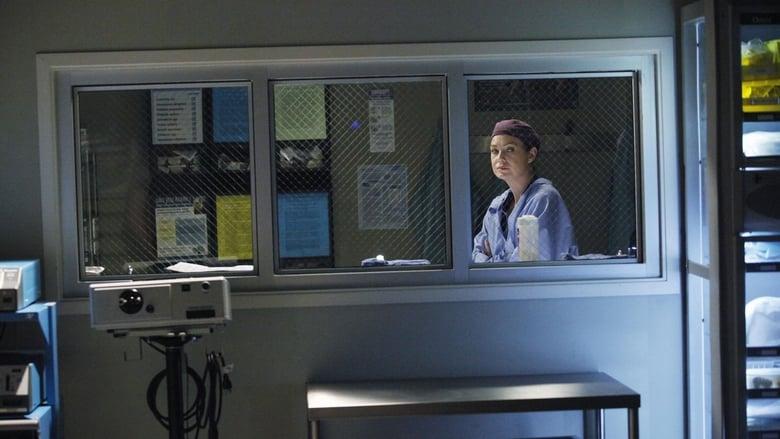 Grey's Anatomy Season 10 Episode 20