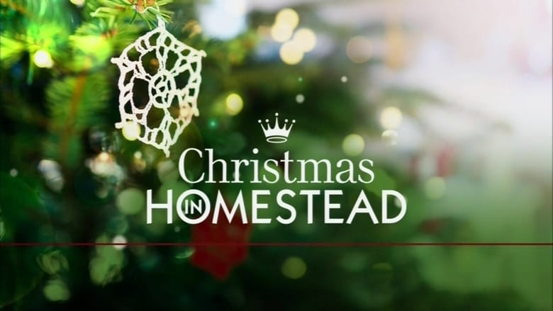 Christmas in Homestead