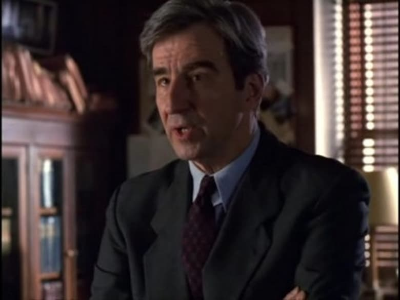 Law & Order: Special Victims Unit Season 1 Episode 15