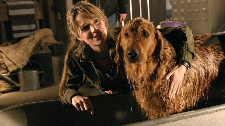 Smallville Saison 4 Episode 14