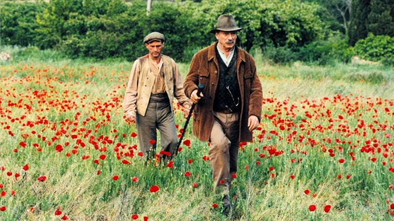 jean de florette movie review essay Buy jean de florette: read 153 movies & tv reviews - amazoncom.
