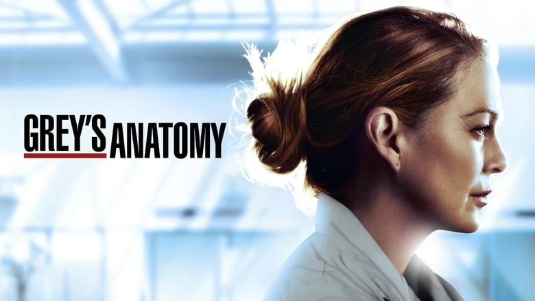 Grey's Anatomy Season 9