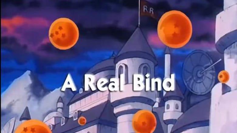 Dragon Ball Season 1 Episode 66