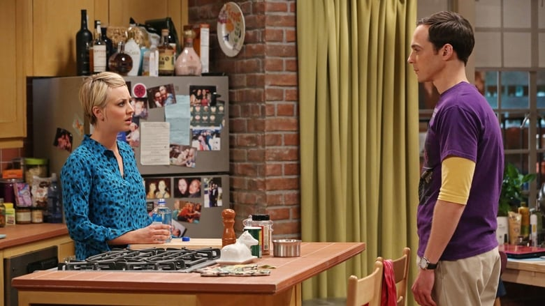 The Big Bang Theory Season 8 Episode 8