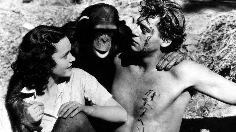 Tarzan The Ape Man Backdrop