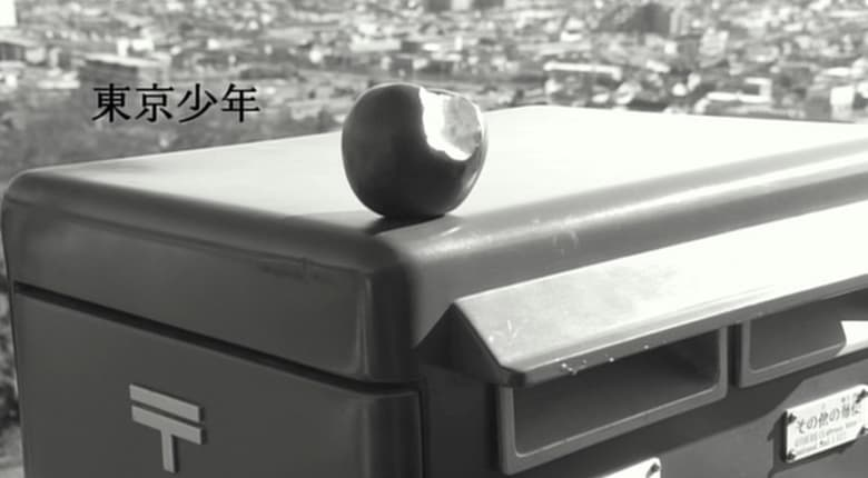 Ver y Descargar Tokyo Boy Español Gratis