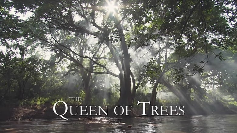 The Queen of Trees