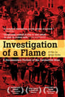 Investigation of a Flame