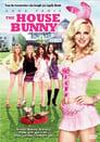 4-The House Bunny