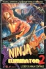 Ninja Eliminator 2: Quest of the Magic Ninja Crystal