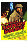 5-The Adventures of Sherlock Holmes