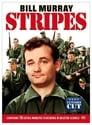 7-Stripes