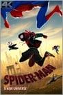 SPIDERMAN: UN NUEVO UNIVERSO (SUB)