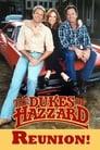 The Dukes of Hazzard: Reunion! poster