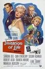 3-Imitation of Life
