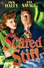 Watch Scared Stiff Full Movie Online HD Streaming