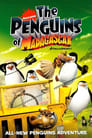 Penguins of Madagascar: Gone In A Flash