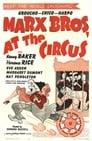 2-At the Circus