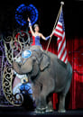 Ringling Bros. and Barnum & Bailey Final Performance