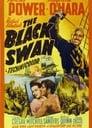 1-The Black Swan